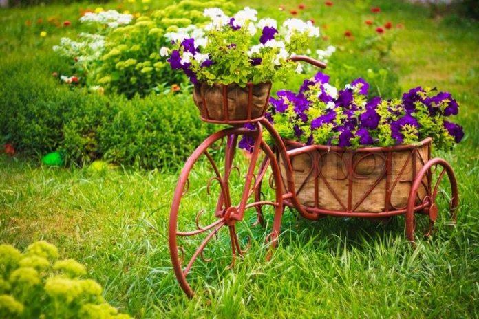 Цветник на даче
